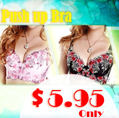 Embroidered Push Up Bra Only $5.95 at Shopping Square