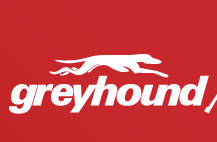 Express Ticket between Canberra and Sydney $22 One Way with Promo Code at Greyhound
